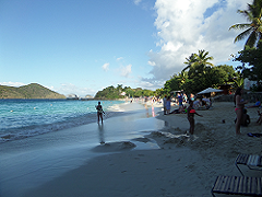 Coki Point Beach
